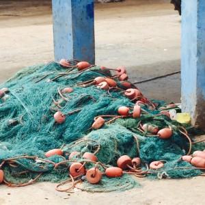 Mushmina Morocco Fish Market (3)
